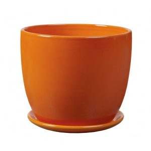 amsterdam orange